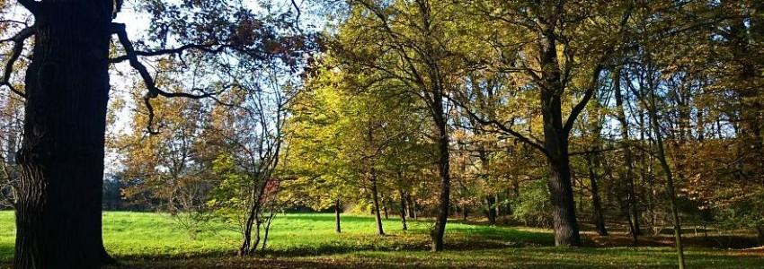 Wrocławskie parki